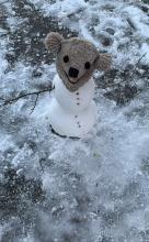 Ana's snowman