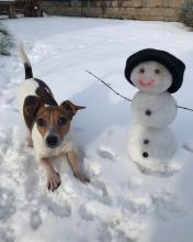Manca's snowman
