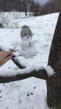 Patricija's snowman